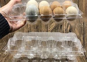 定制鸡蛋托